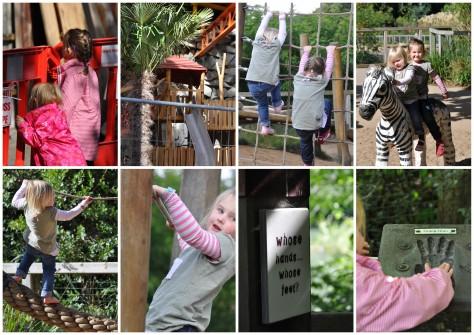 Dublin Zoo #1