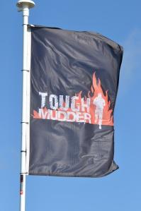Tough Mudder Dublin 2014